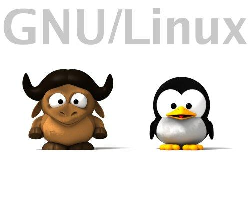 come fare gnu/linux